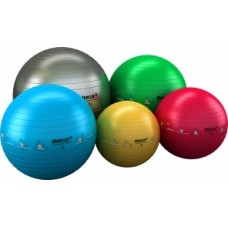Bola Professional Gym Ball
